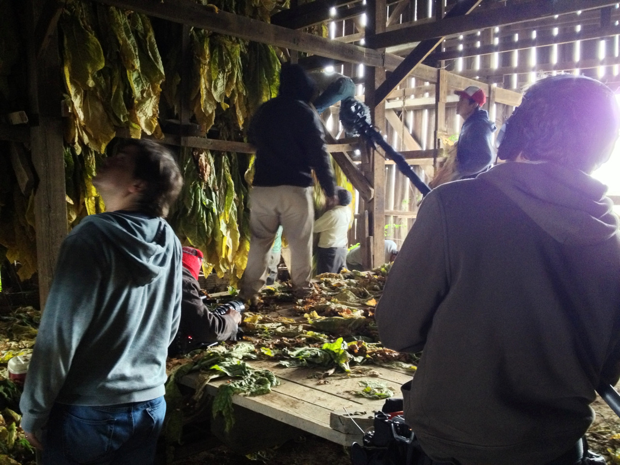 jefsewell :     Laura snapped this picture of me, Lee and Justin while we were filming a crew hanging their tobacco in a barn.