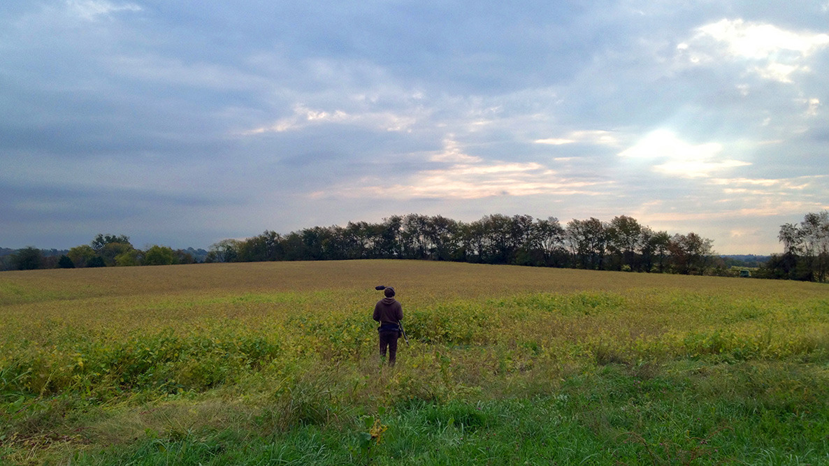 Justin Hennard captures sound in a Kentucky soybean field for  FORTY PANES  (Now in production.)
