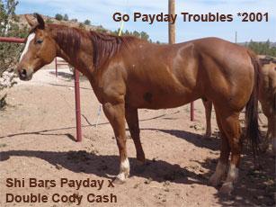 Payday_1.jpg