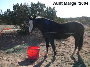 Aunt-Marge_0.jpg
