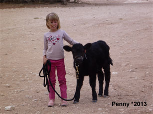 Penny_3.jpg