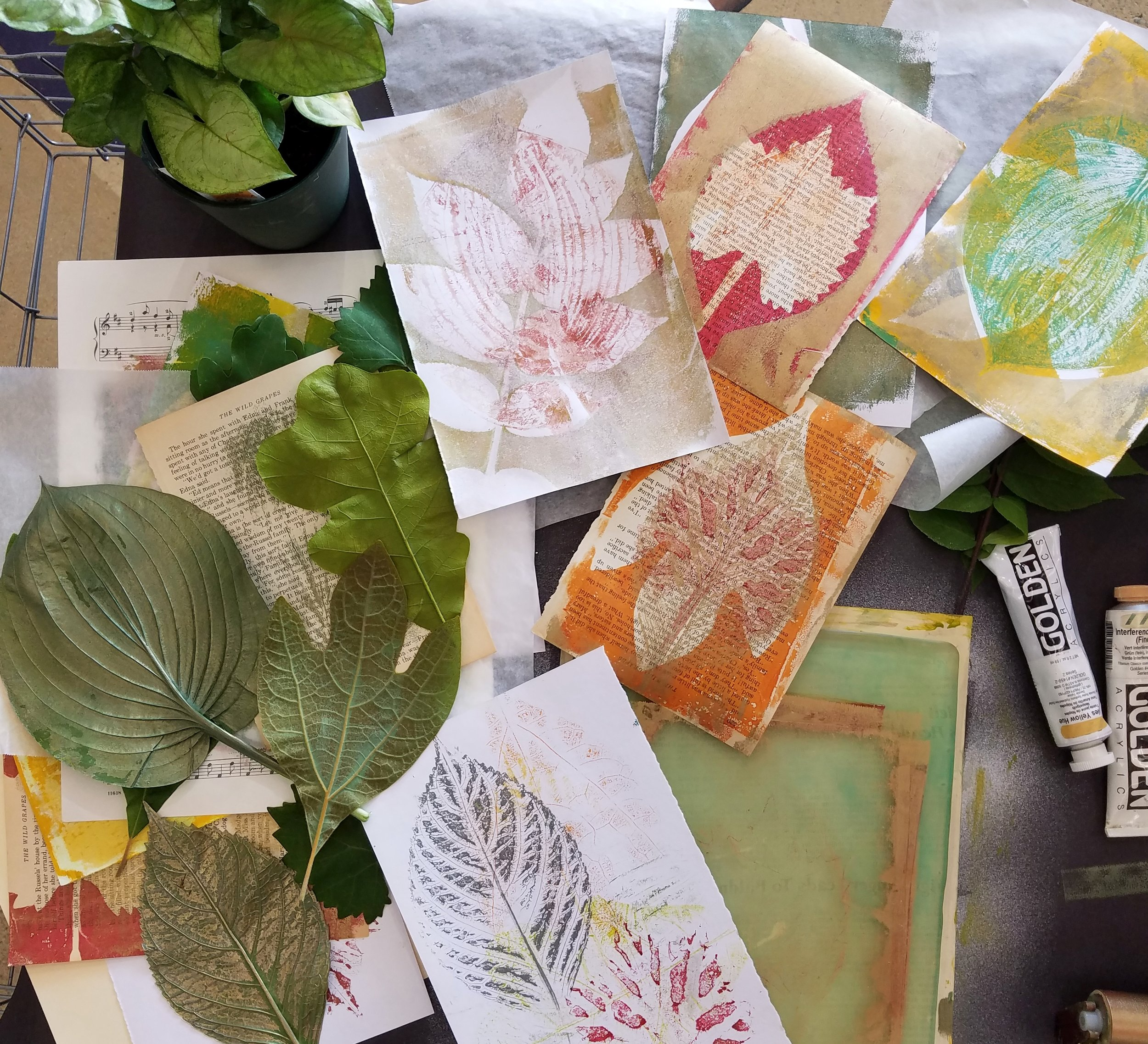 Print Naturally  -- a workshop that focuses on capturing the beauties of nature