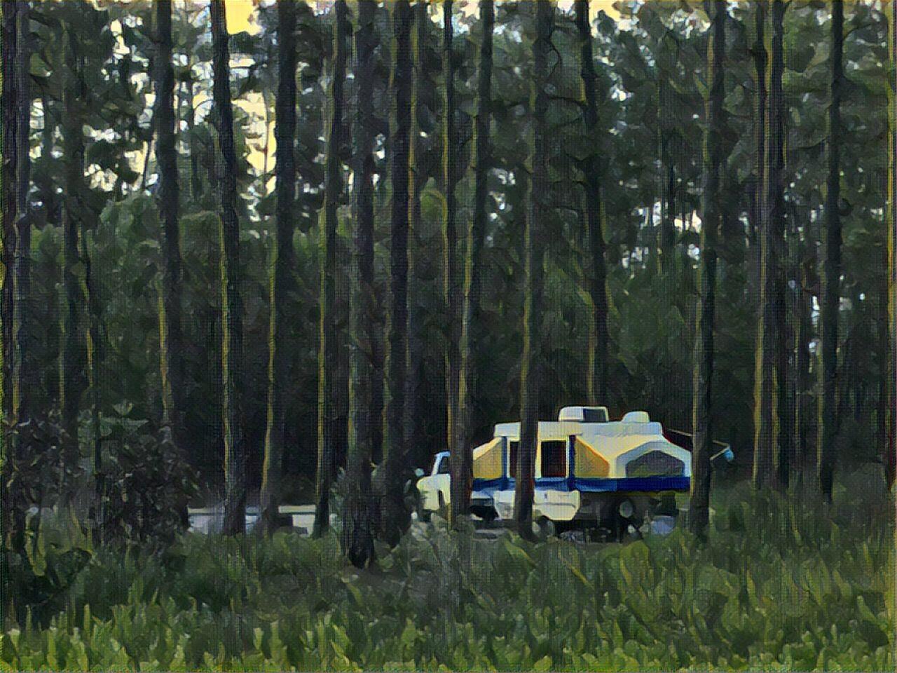 0707-camper in the woods.jpg