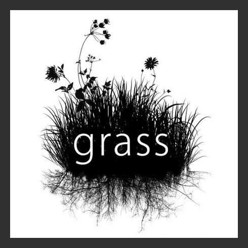 GRASS (Group Recycling and Sustainable Solutions) (University of Louisville)