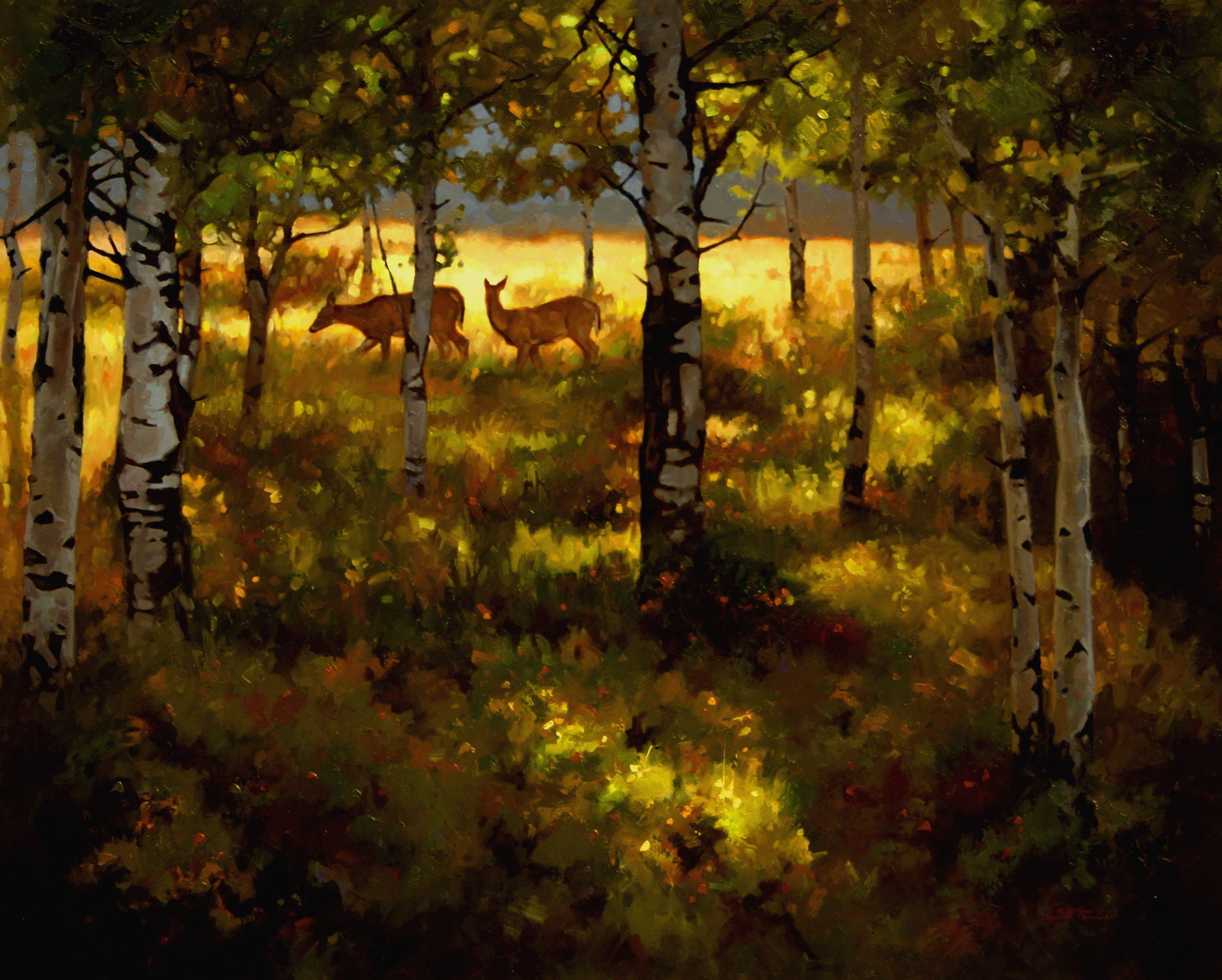"""Aspen Whispers"" 24x30 oil  Mountain Trails Gallery, Jackson"