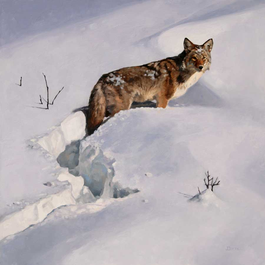 """Tough Hunt"" 24x24 oil  Private Collection"