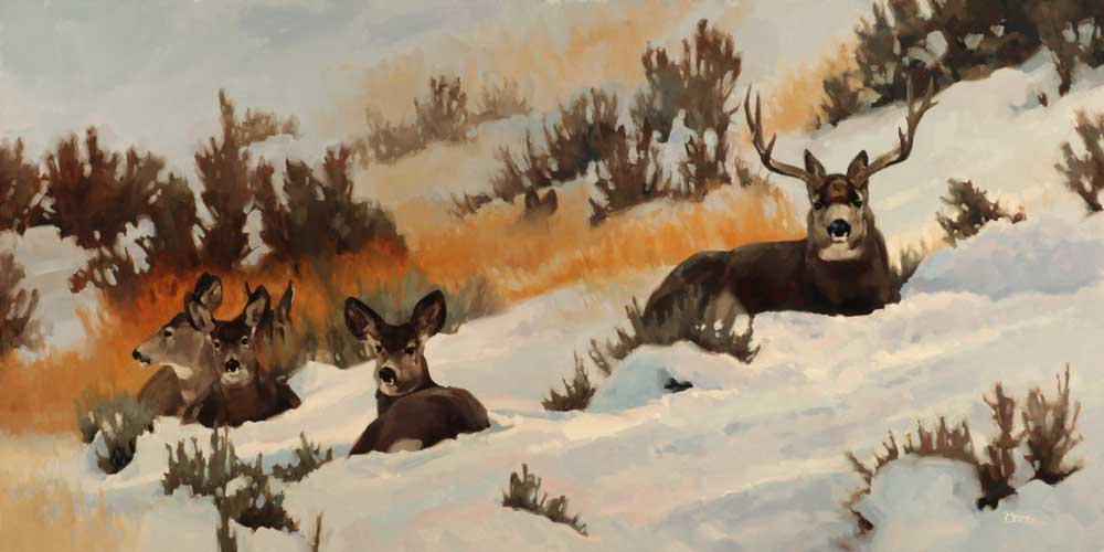 """Winter Range - Mule Deer"" 18x36 oil"