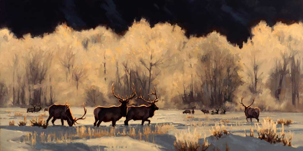 """Ten Below - Rocky Mountain Elk"" 18x36 oil"