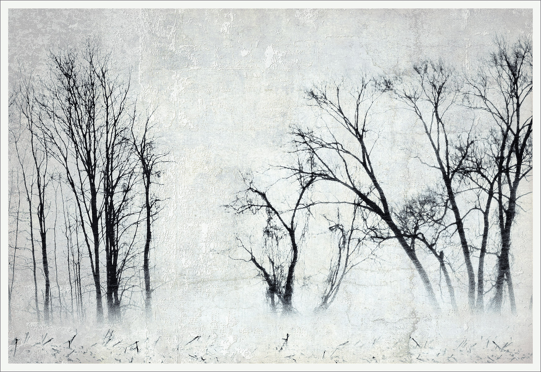 Winter Squall
