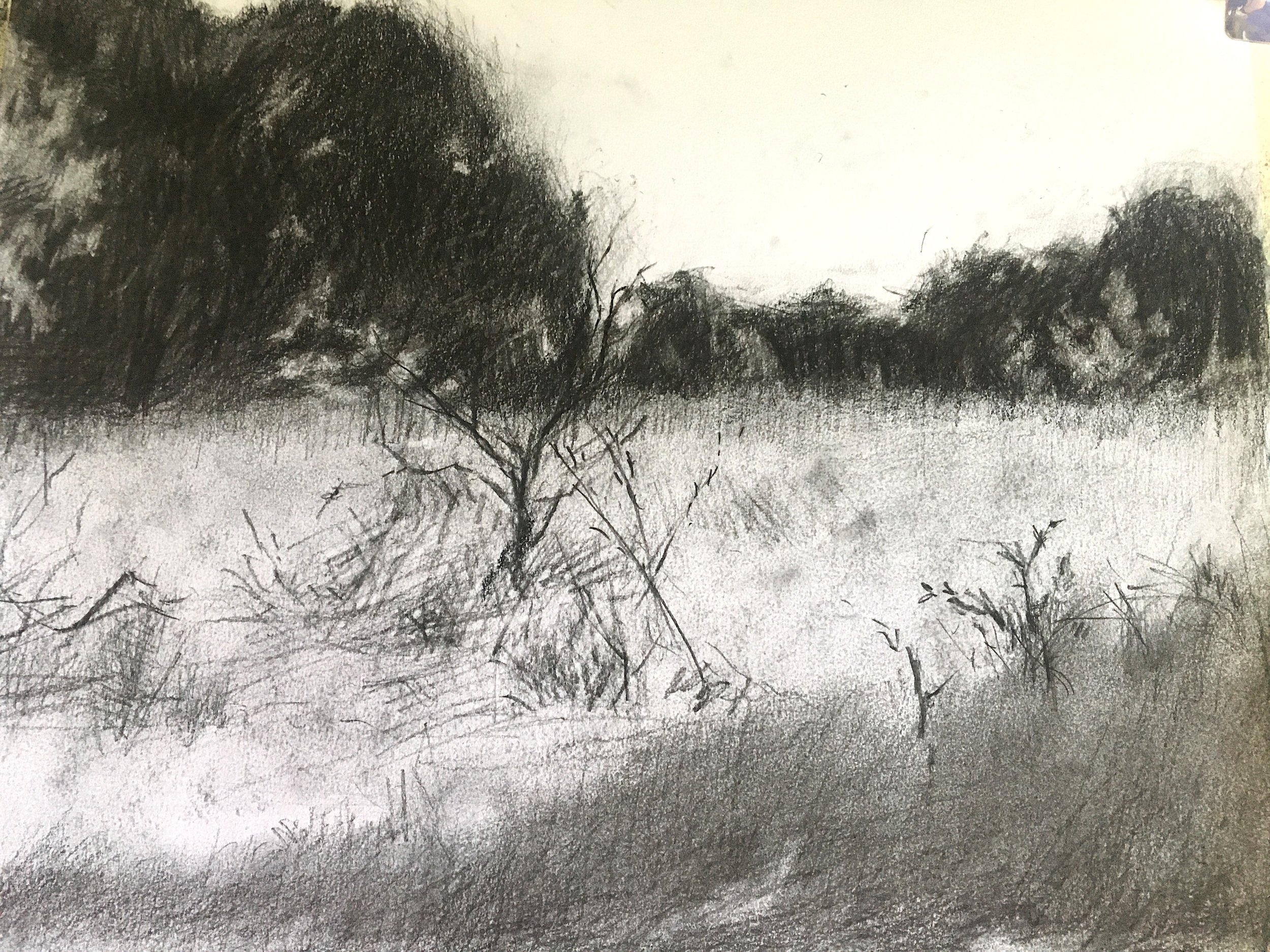 Morning View 3 • Vine charcoal & charcoal pencil on paper •  14 x 17""