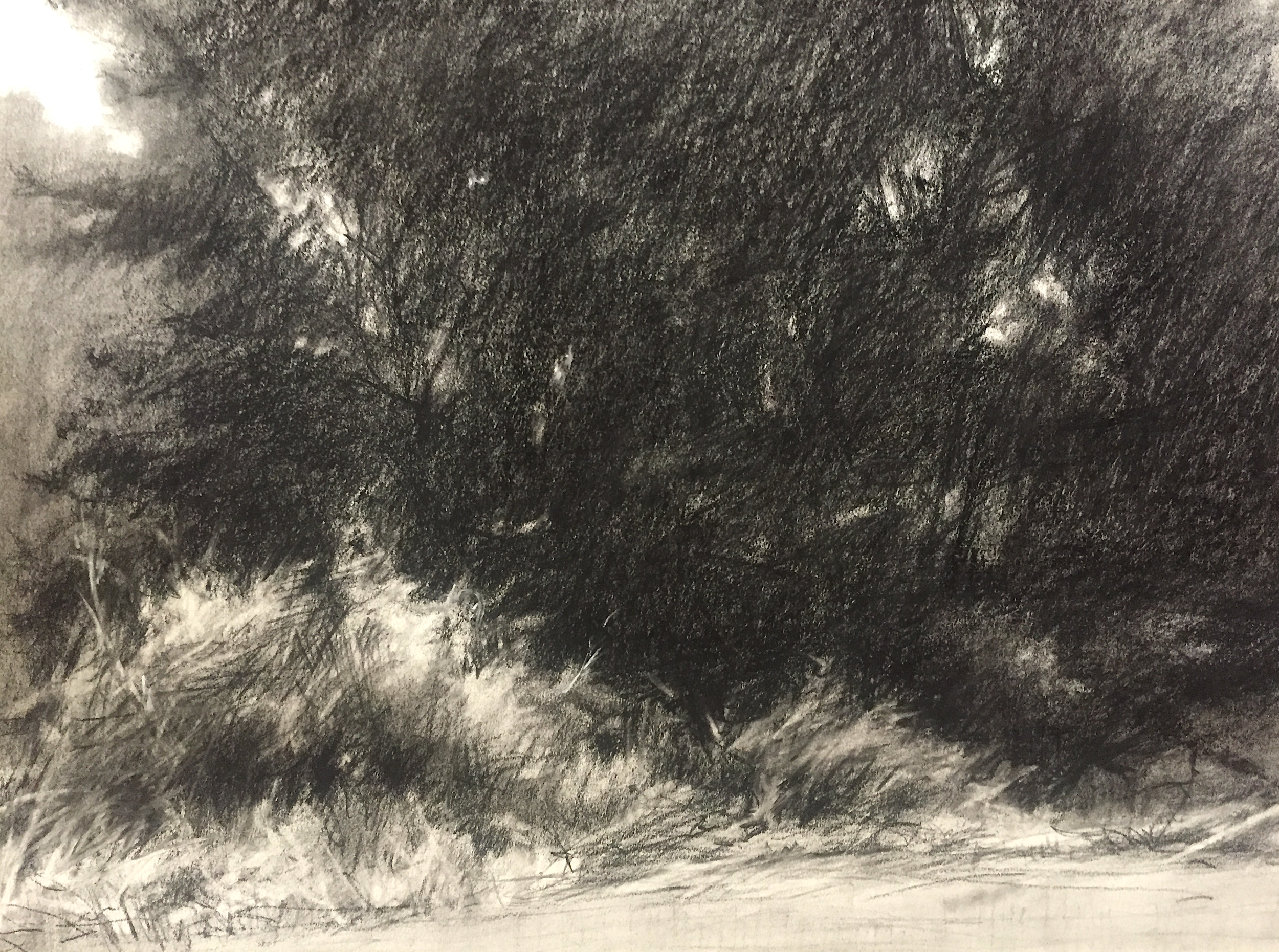 """Morning View 5 • Vine charcoal & charcoal pencil on paper • 18 x 21.5"""""""