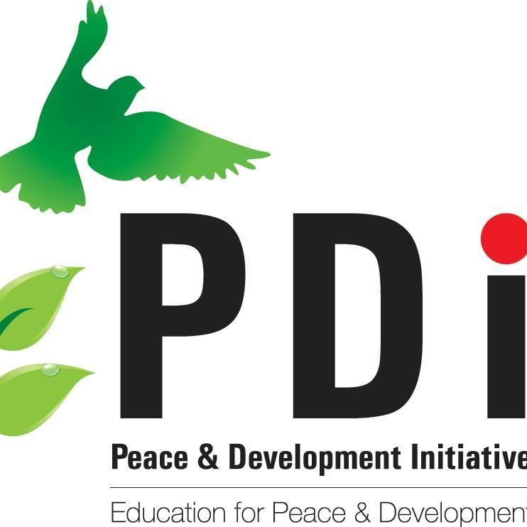 PDI Image.jpg