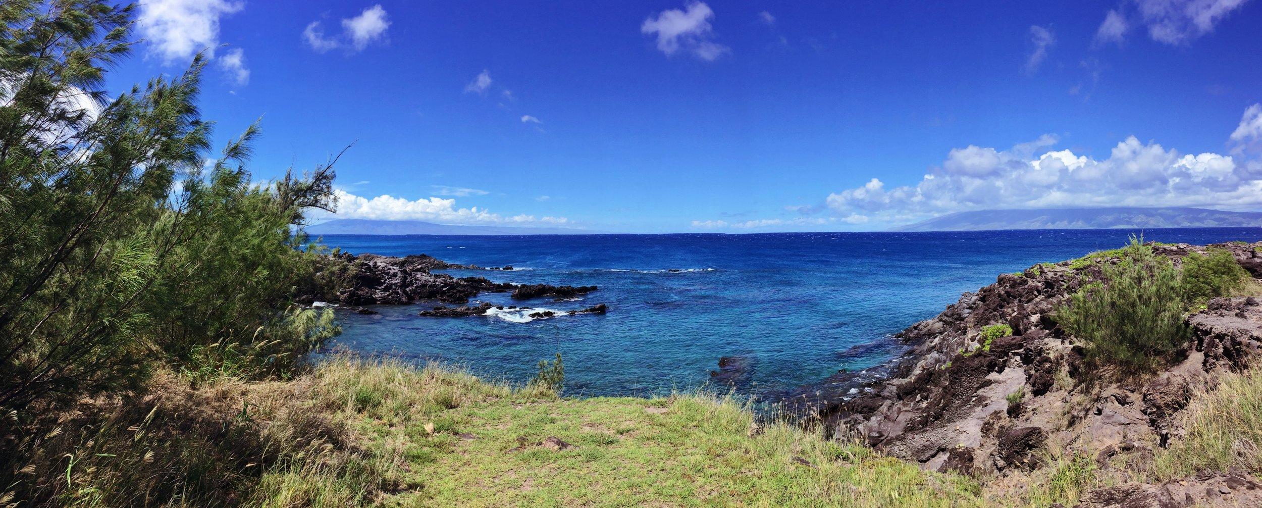 Kapalua-Maui-MalamaKaiFoundation.jpeg