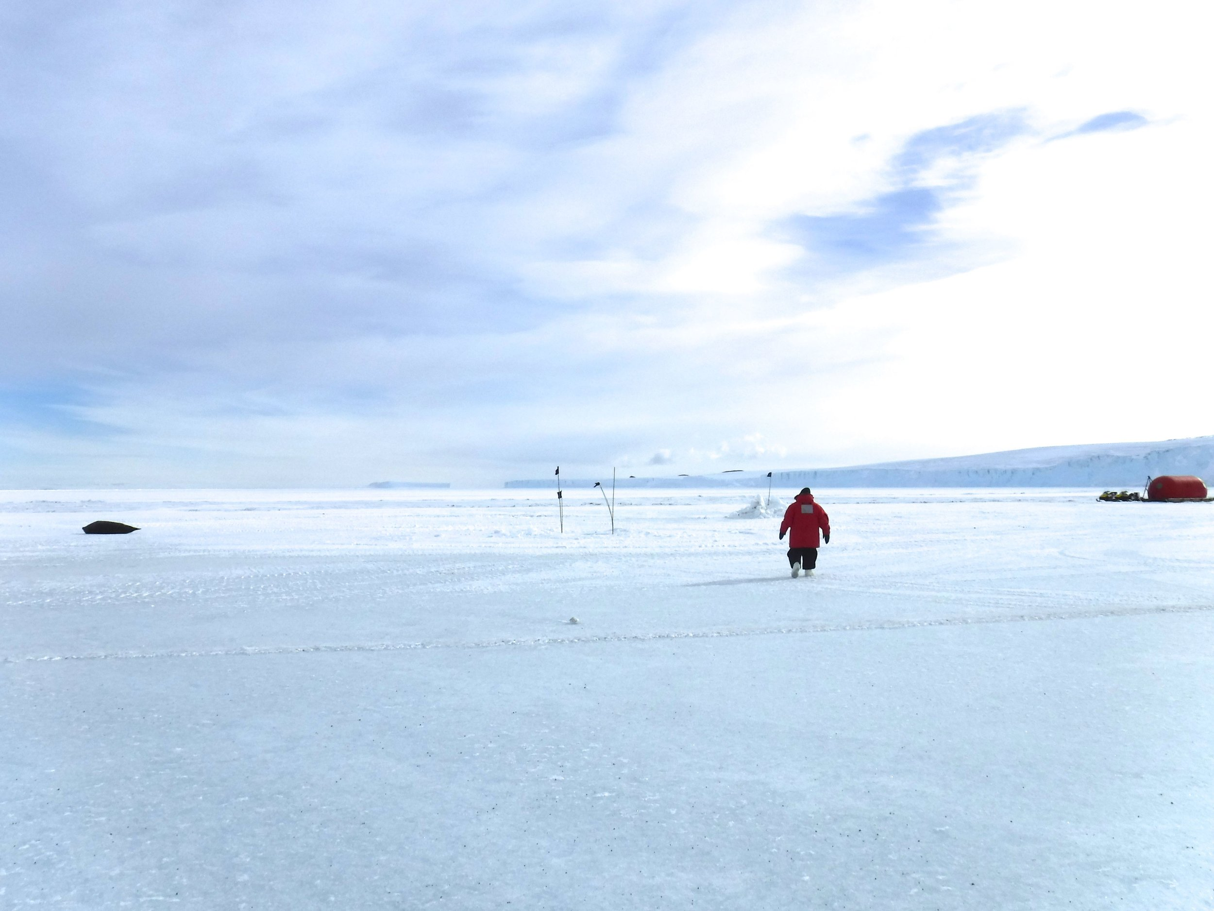 A Weddell seal and my guide, Elaine Hood, on the sea ice near Cape Evans.