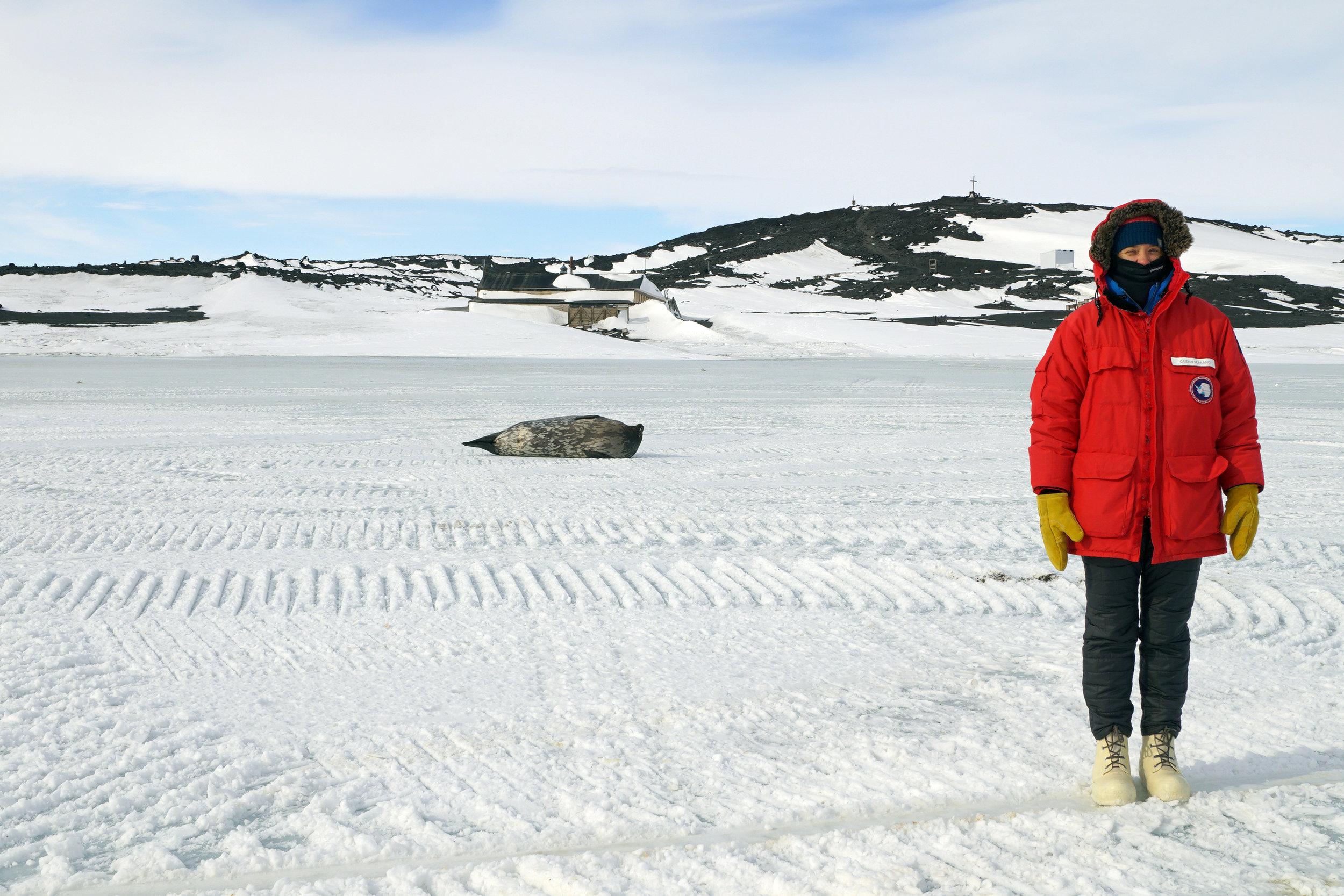 Weddell seal and Caitlin. Photo credit: Elaine Hood.