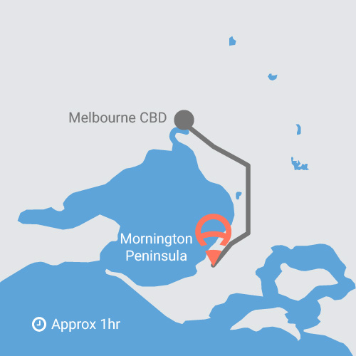 VIC - Region - Mornington-80.jpg