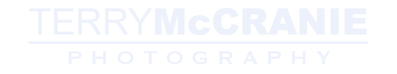 Terry McCranie Logo