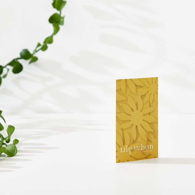 Lily Urban curator of potted faux 🌸 #tdkpeepshow #businesscards #visualjournal #vsljrnl #brandcuration #collectgraphics #fauxplants #inspofinds #designspiration #design #branding #newcastle #melbourne #potplant #plants #creative #graphicdesign #colour #contemporary #logo #typography #graphicdesigner #cards #designfiles #theloop #instagood #publication #creative #smallbusiness