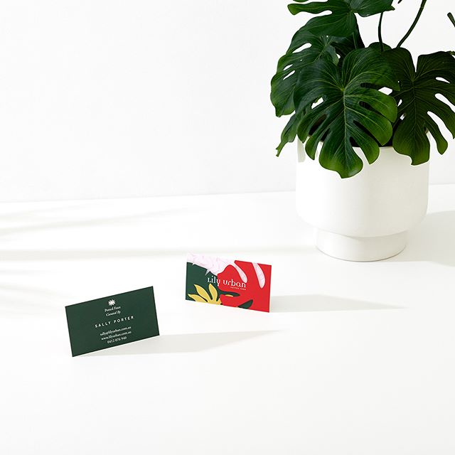 Colourful business cards for @lily.urban, curators of potted faux aka fake plants. This shot by the amazing @shelley_horan features one of Lily's plants! Check them out!!!