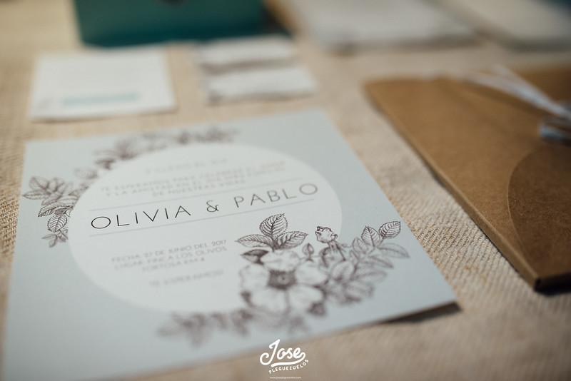 heartmade-weddings-jose-pleguezuelos-033-L.jpg