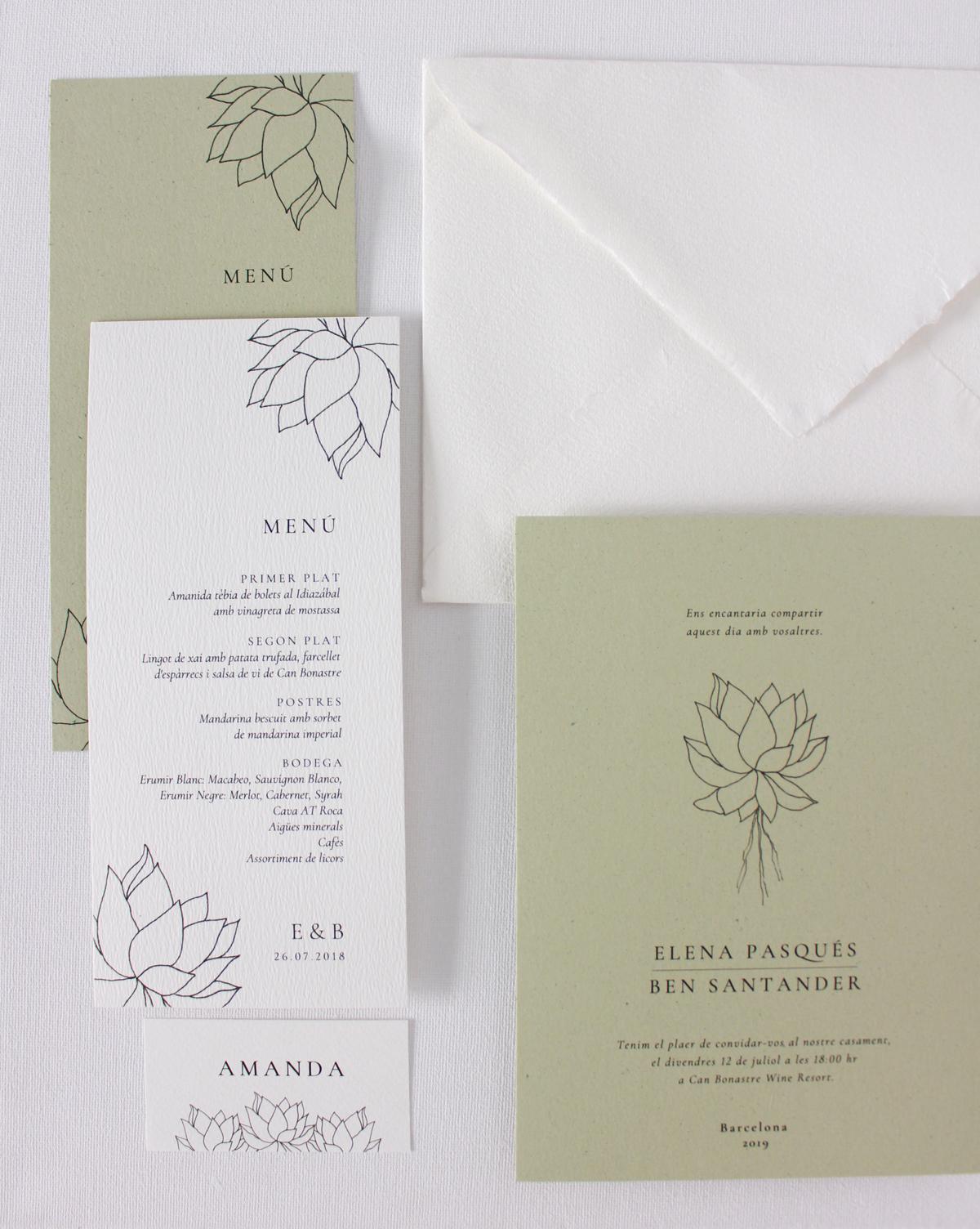Papelería con ilustración de suculenta, de papel de pigmentos naturales de kiwi.