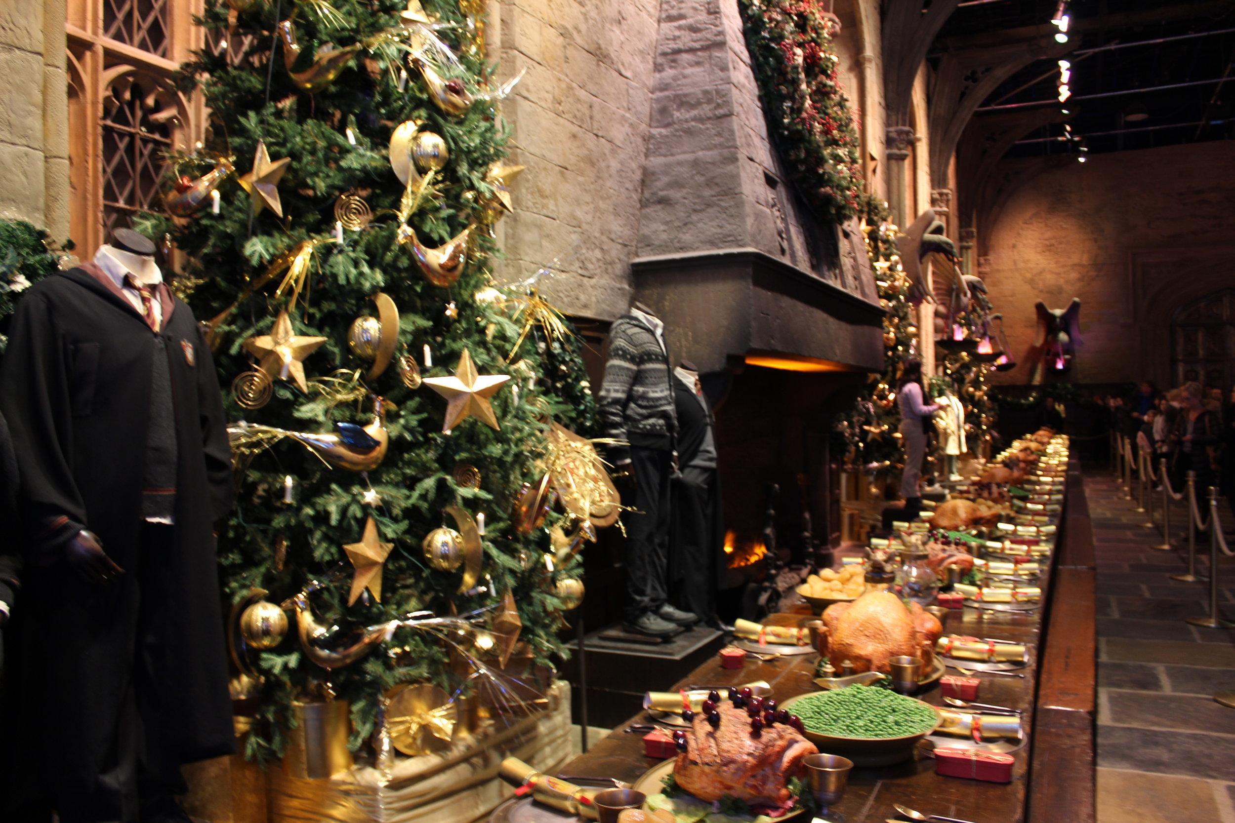 Roast of your dreams - thank you Harry Potter for your magical dinner!