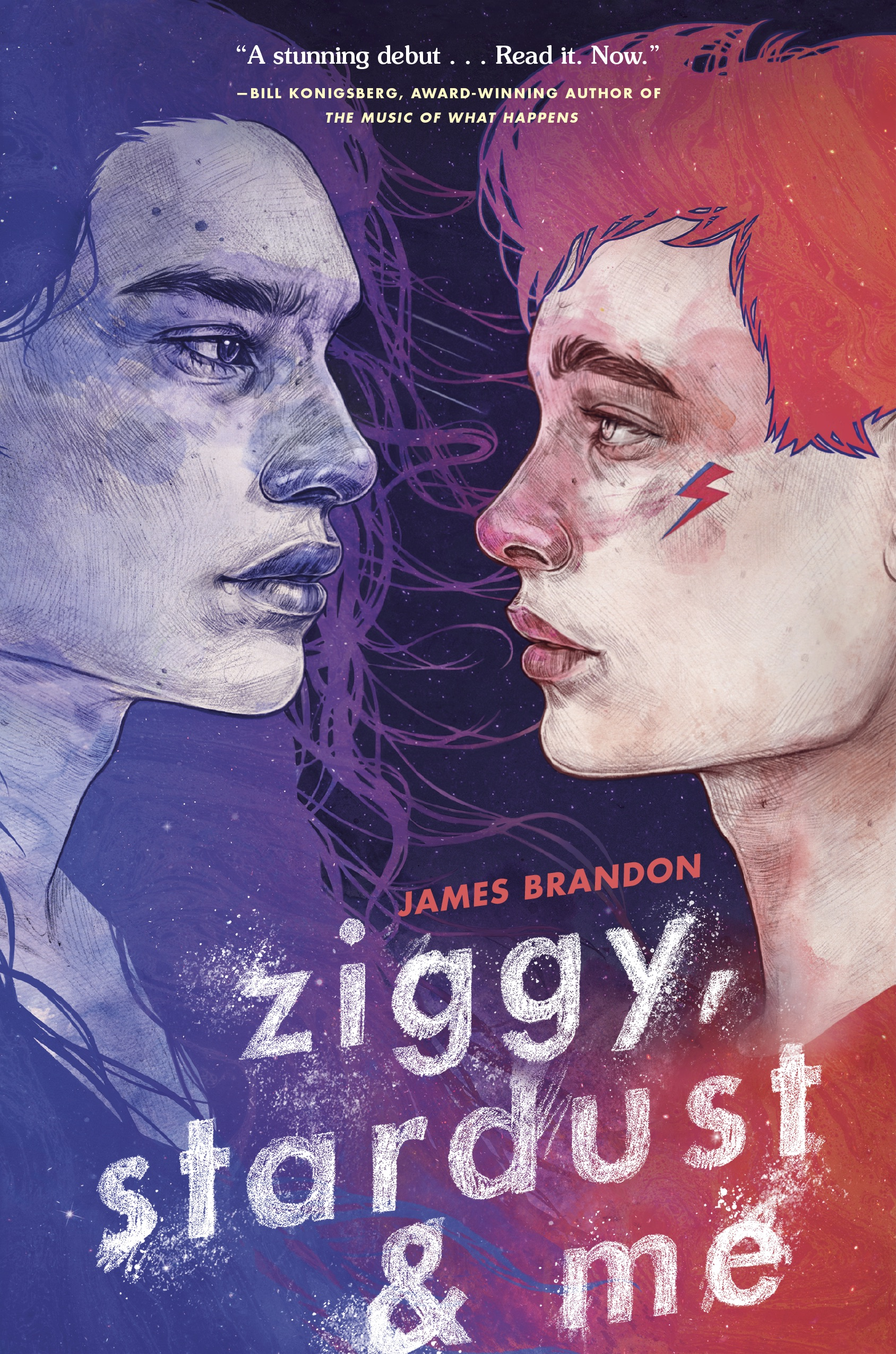 the ziggy preorder campaign -