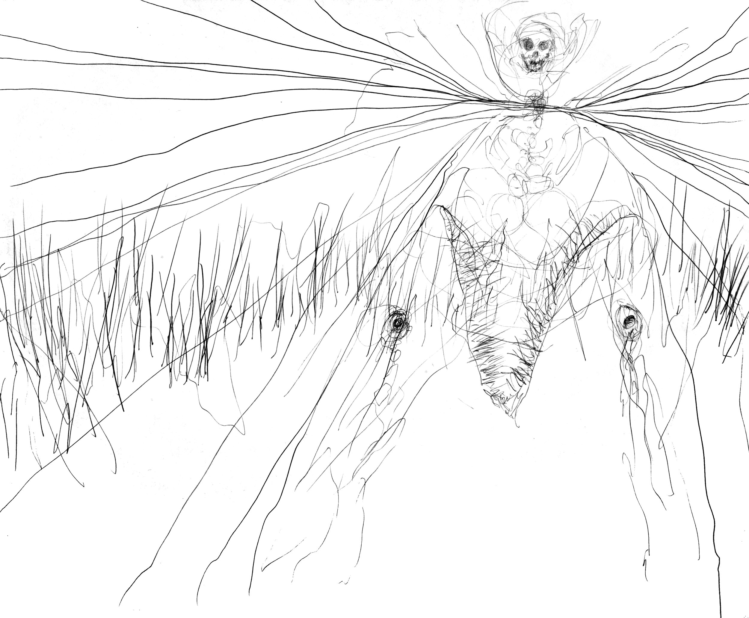 Demon Fish.jpg