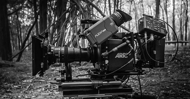 Into the forest #bts #setlife #arri #arrialexa #arrialexamini #kowa #kowaanamorphic #directorofphotography #director #producer #sonyrx1rii