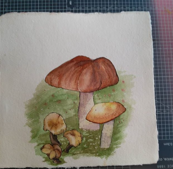 Mushroom painting by Robin Tynan, inspired from the visit in the nature surrounding Helsinglight. Photo Robin Tynan