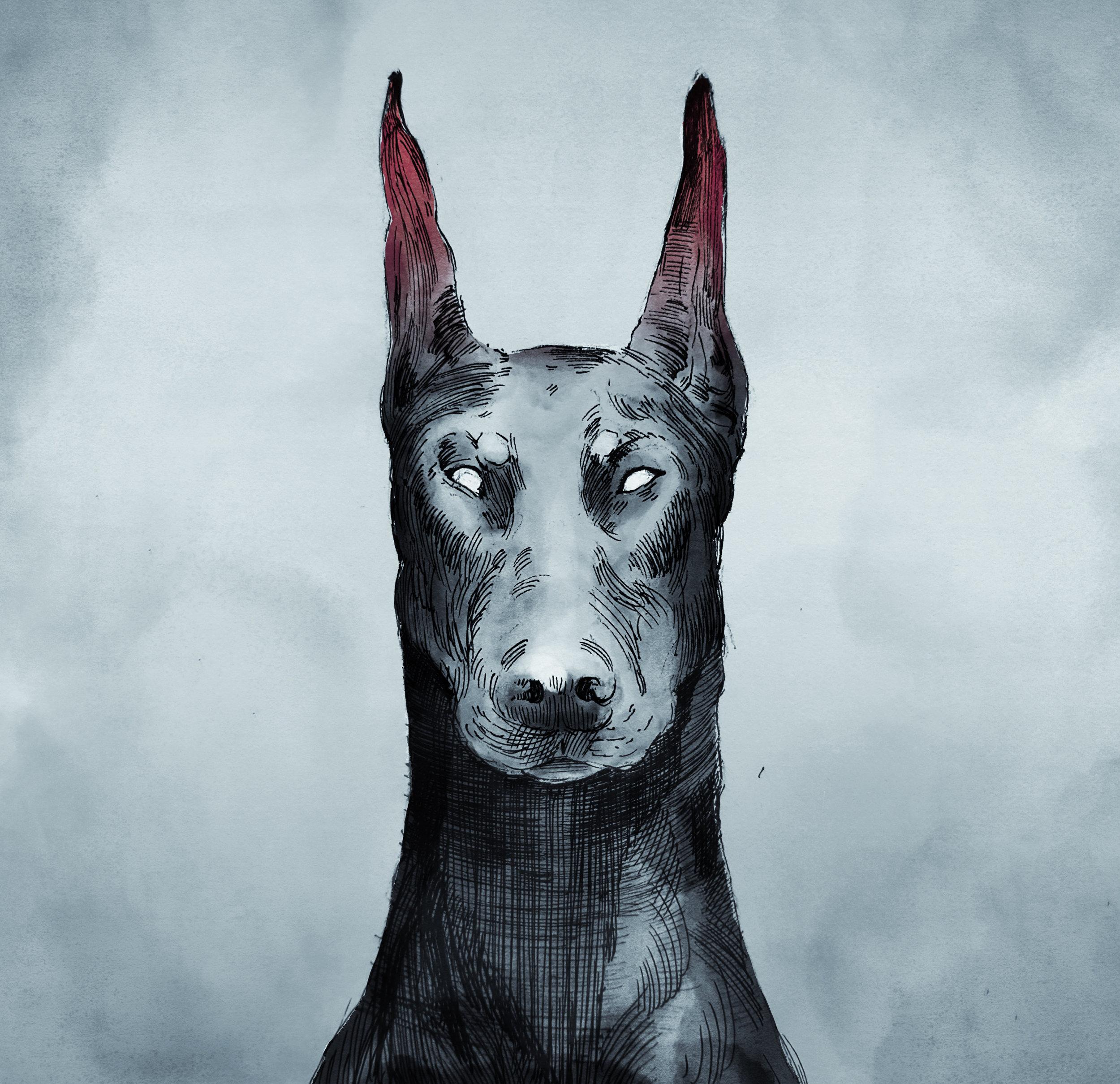 Dog 17.jpg