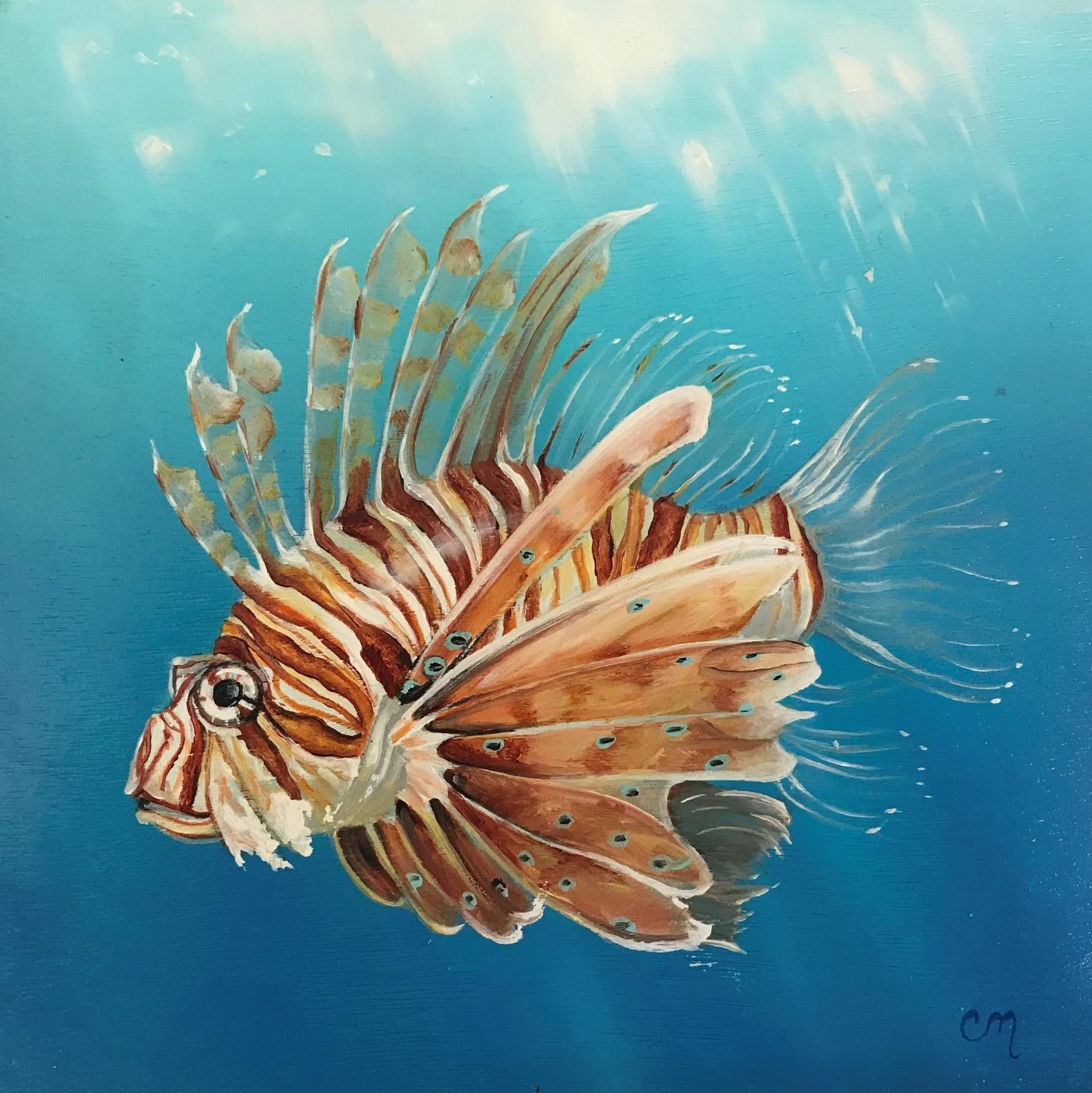 Lion Fish, 8x8