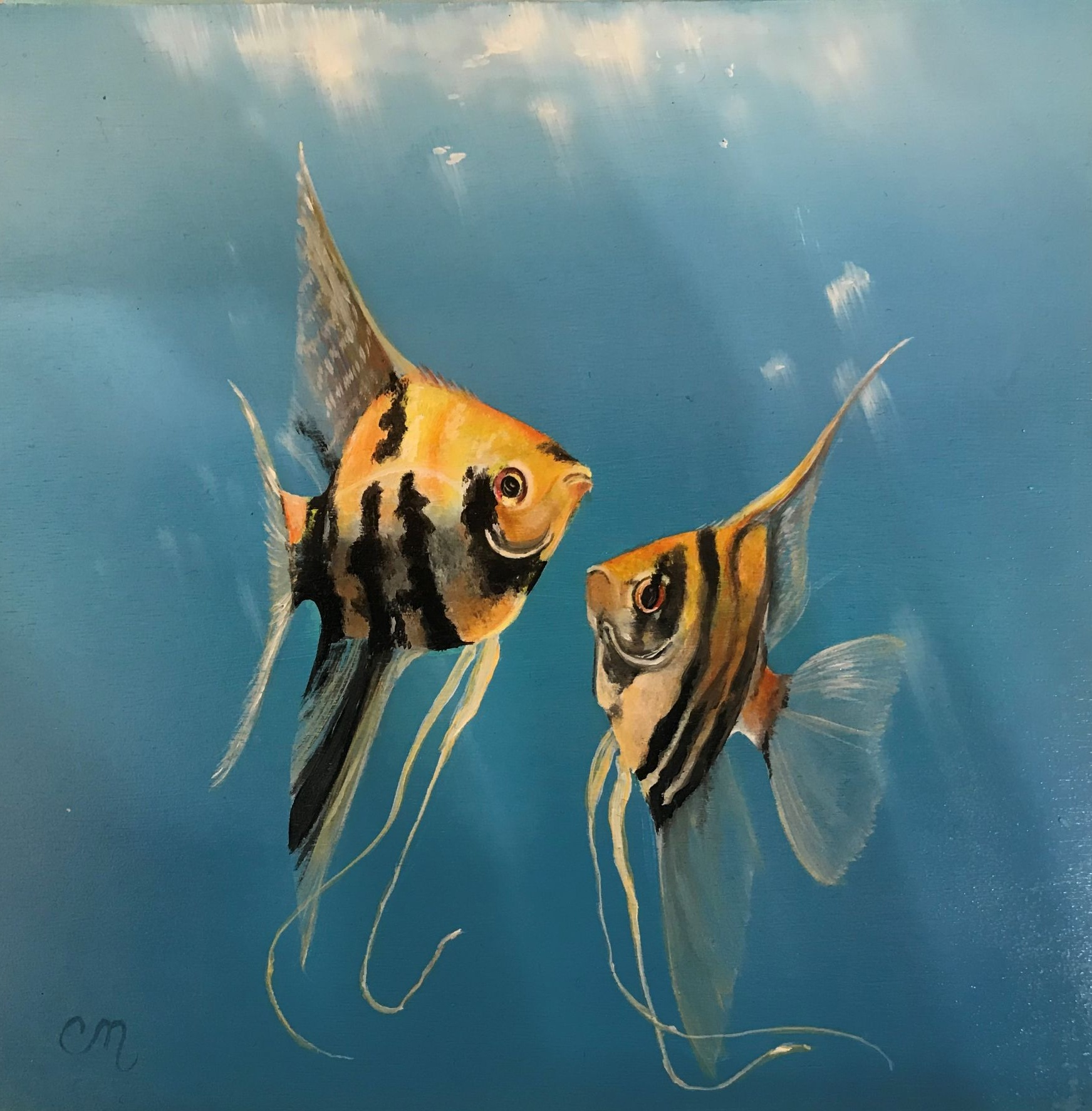 Two Angel Fish, 8x8