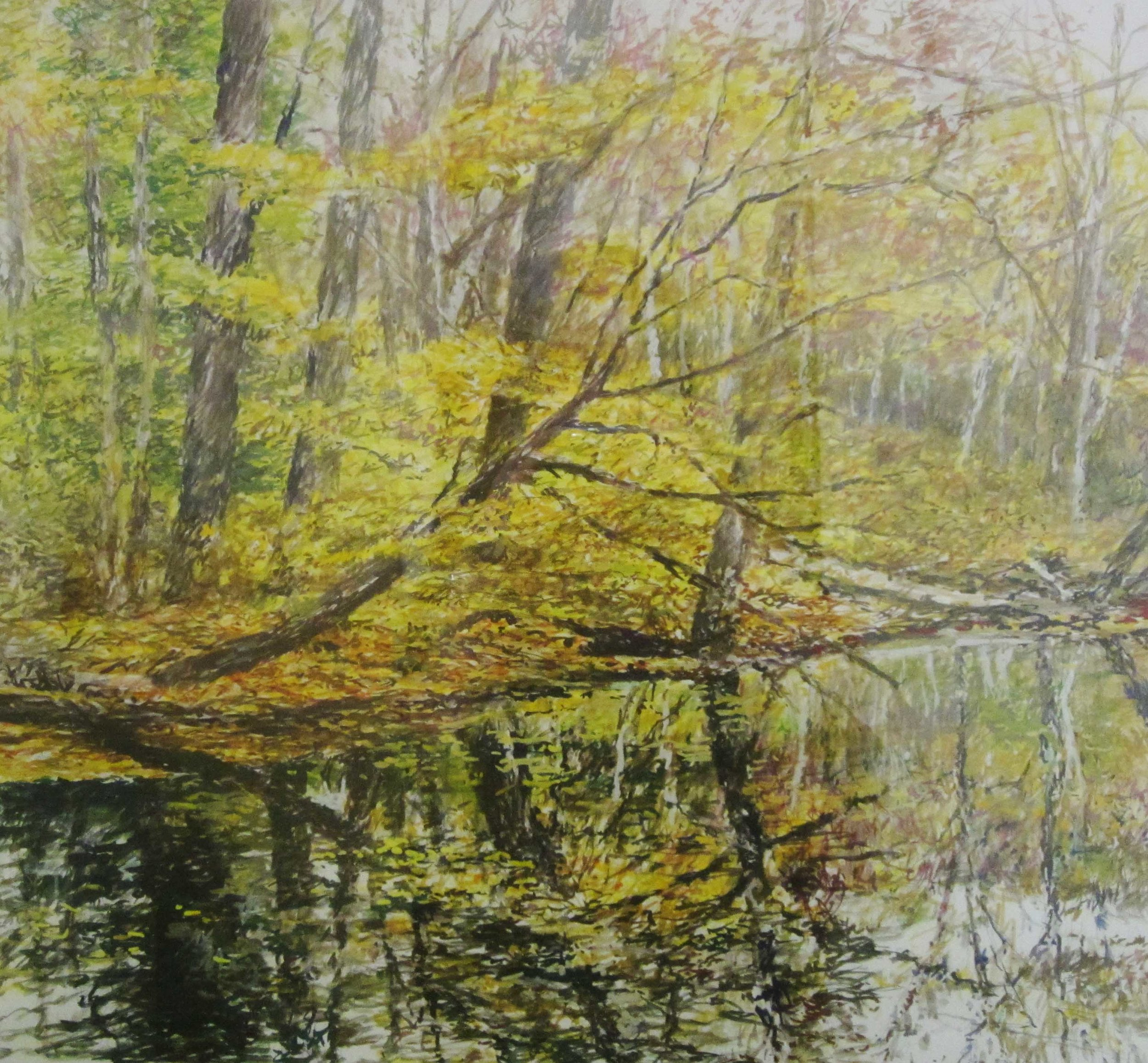 Wadsworth Parkl, 29x31