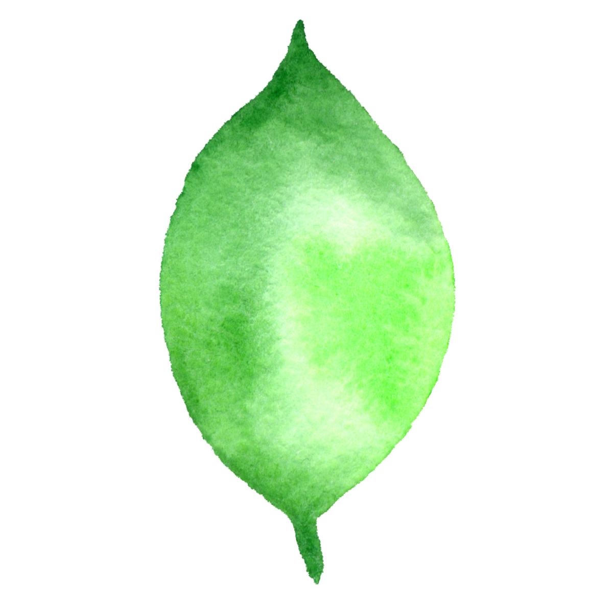 Large Leaf #5 2017-09-26.png