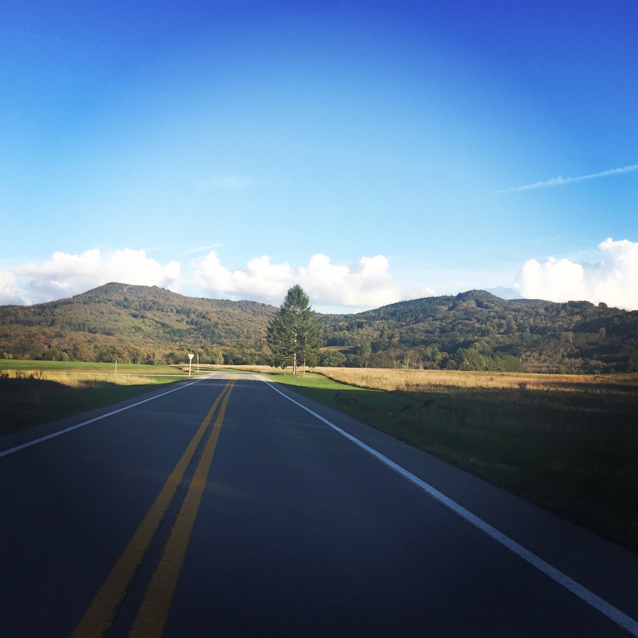 Canaan Valley views where Q & A Associates has their programs.