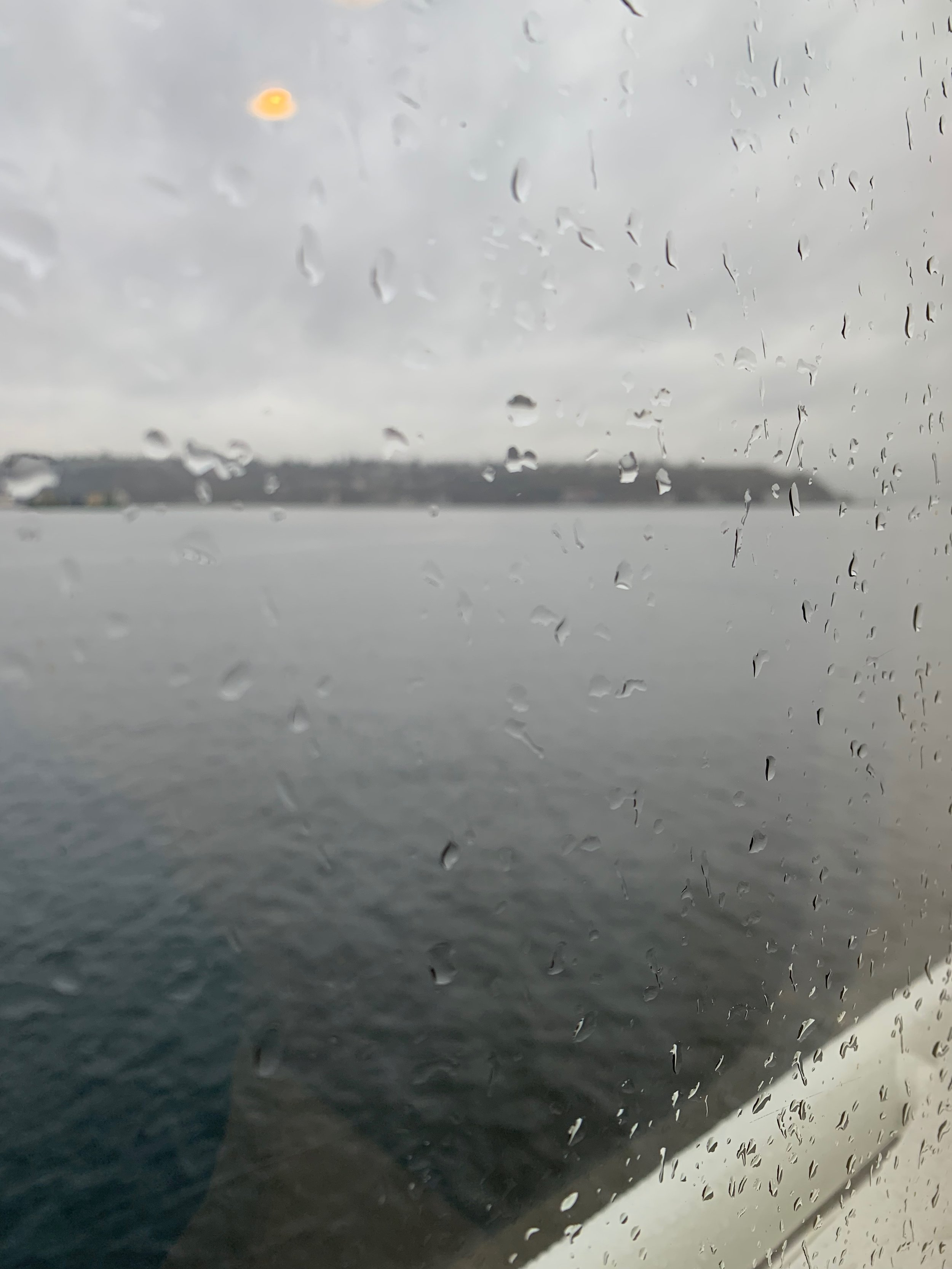 Taking the ferry from Seattle to get to Gray Wolf Ranch.