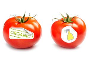 organic-v-non-organic-2453121.jpg
