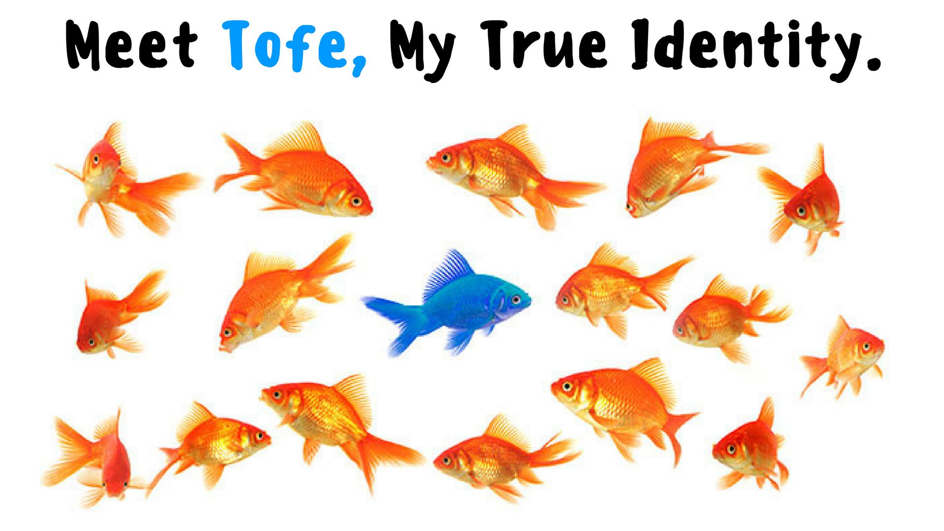 Meet Tofe, My True Identity.png