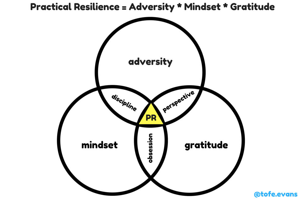 Practical Resilience Framework.png