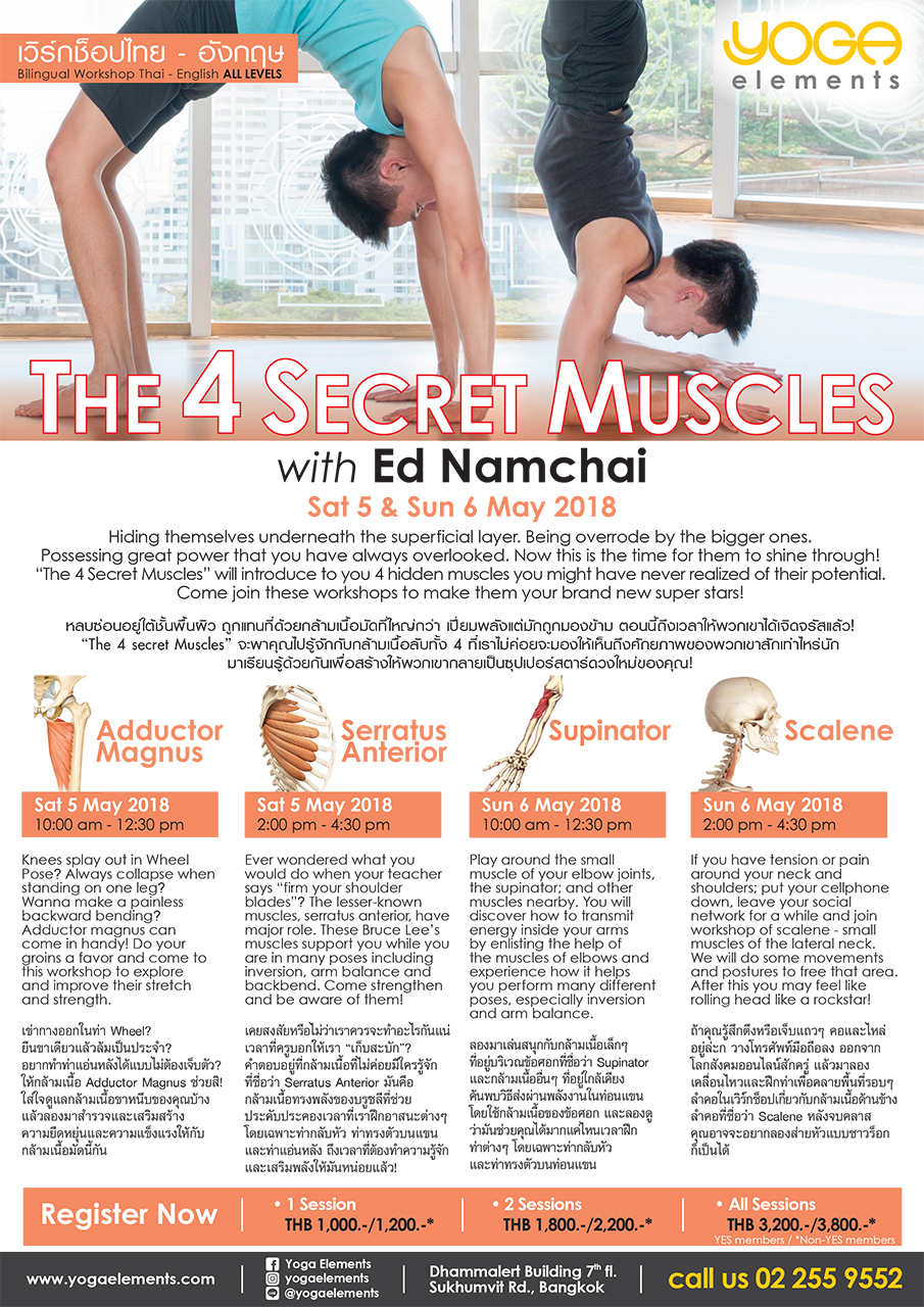 THE 4 SECRET MUSCLES   with ed