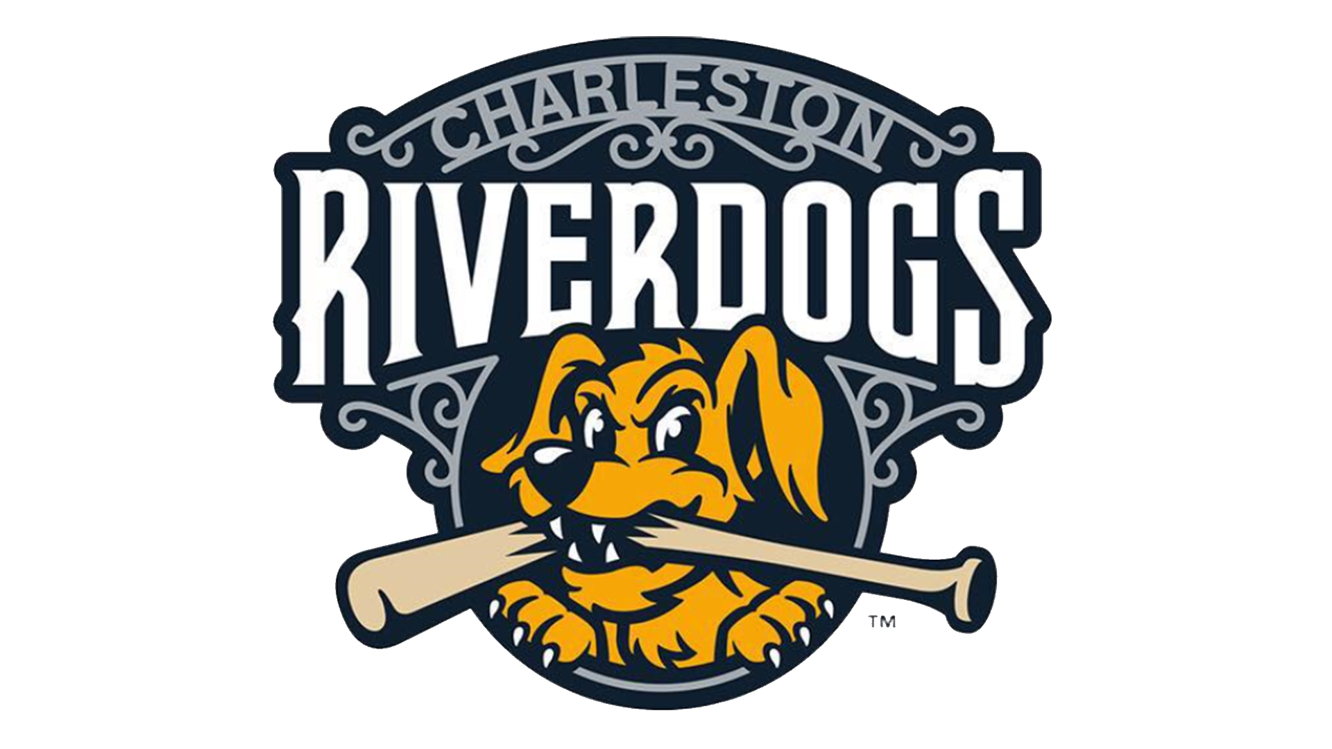 2019 HOSTING VENUE SPONSOR: CHARLESTON RIVERDOGS