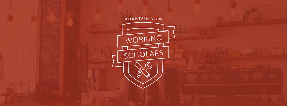 Working-Scholars_banner.jpeg