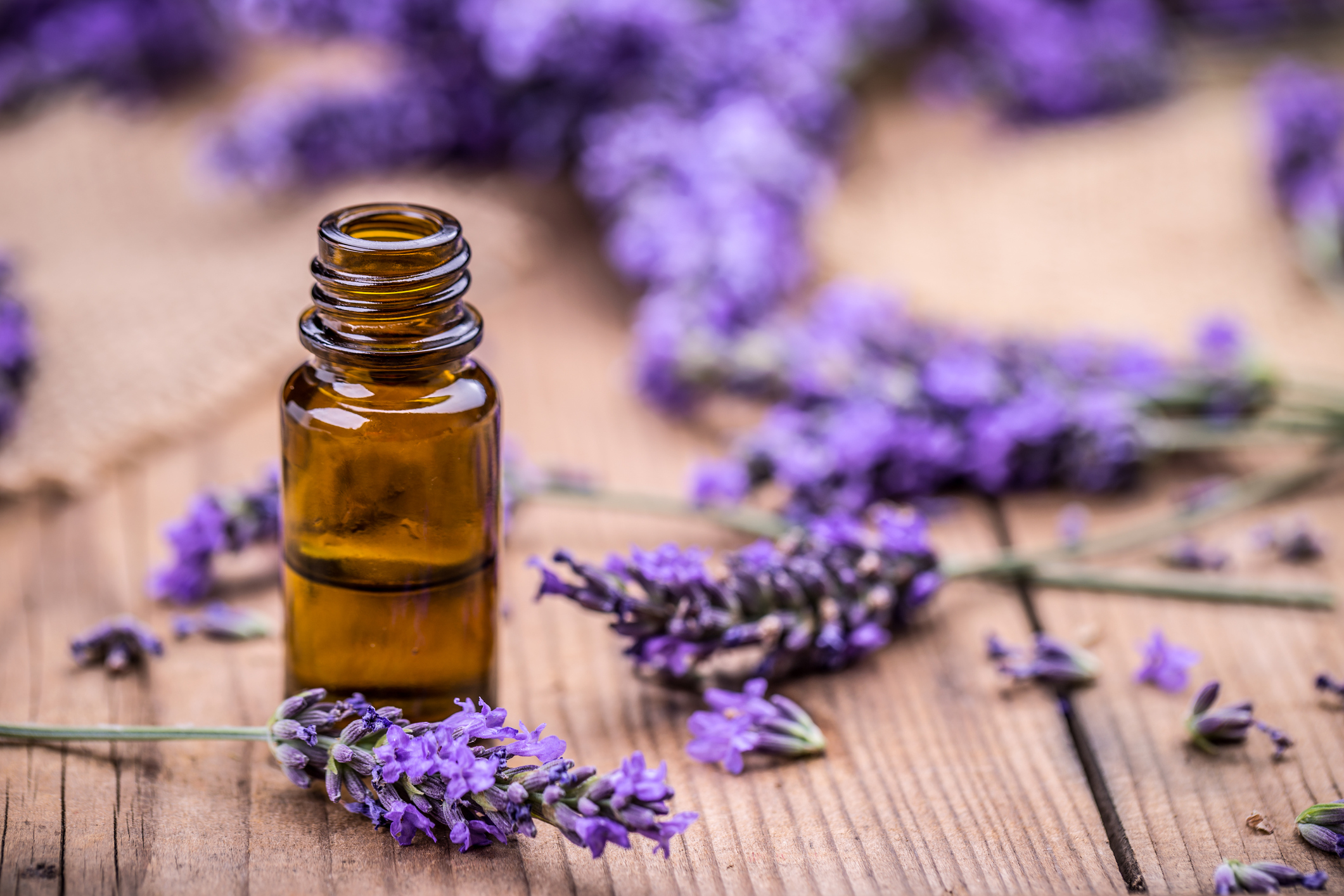 lavender and oil.jpg