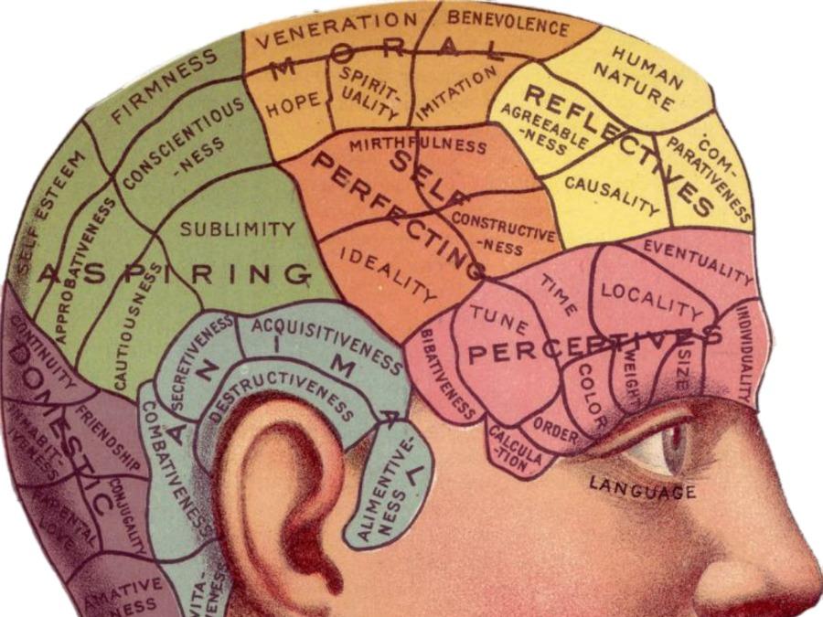 Post - Trauma and the Brain.jpg