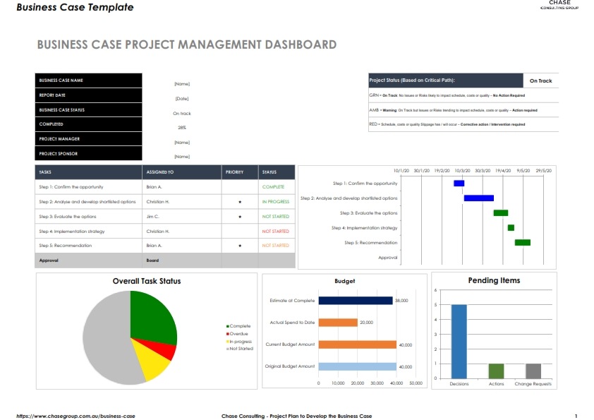 Project Plan to Develop the Business Case
