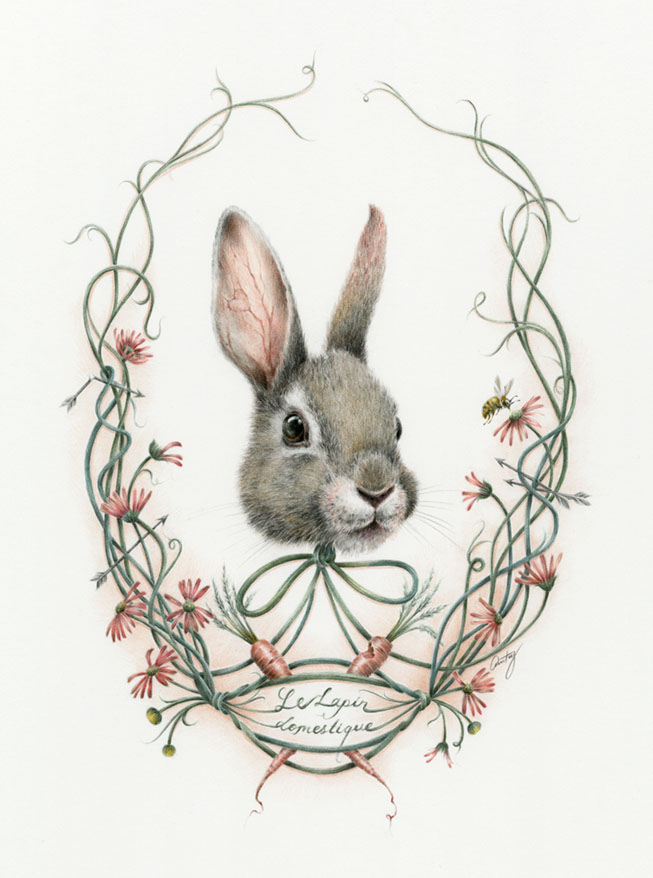 'Lepus Australis' group show