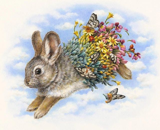 'Columbia Basin Pygmy Rabbit' available at @talongallery . These rabbits depend on the shrub-steppe landscape of eastern Washington, where their diet mostly consists of sagebrush. They are important for the land they live in as they create burrows which in turn help the soil maintain its health.  Also features Hera Buckmoths, Indian paintbrush, Rabbitbrush, Arrowleaf Balsamroot and sagebrush violets. . #columbiabasinpygmyrabbit #herabuckmoth #sagebrush #rabbitbrush #endangeredspecies #colouredpencil