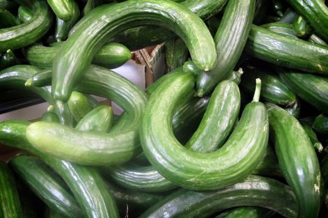 Gemaakt van kromme komkommers -