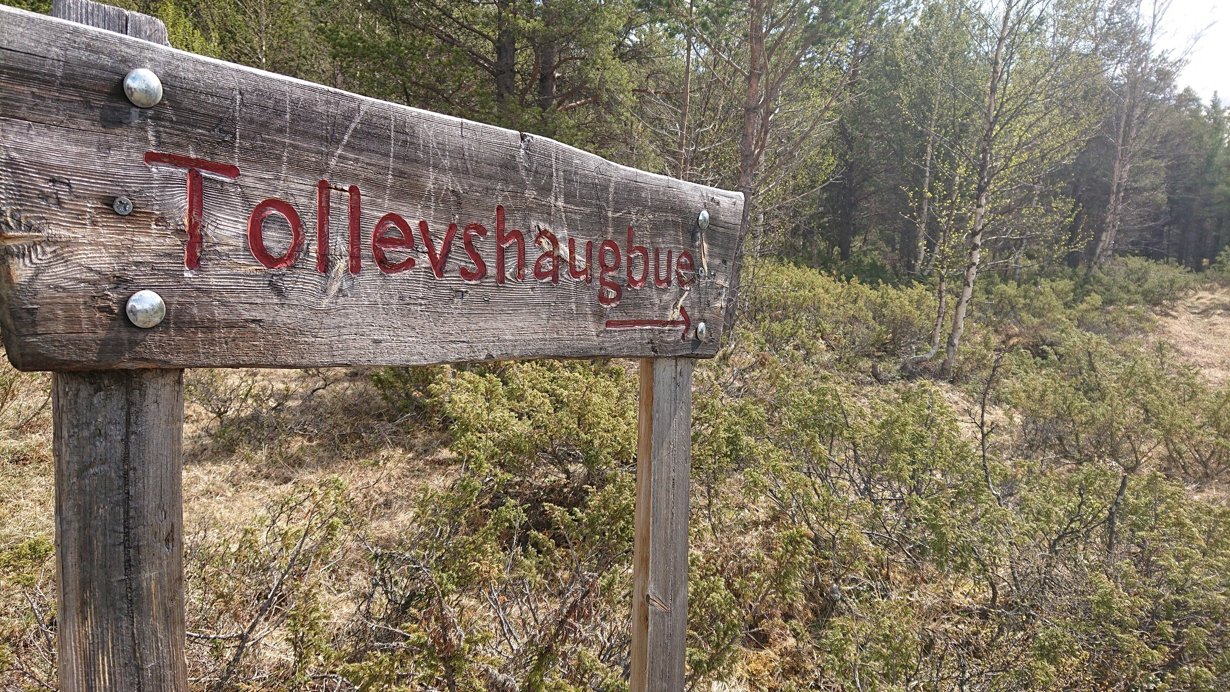 Til Tollevshaugbua – Skilt til ei av fjellstyrets hytter, tilgjengelig for leie på inatur. Hytta ligger nær grense til Folldal